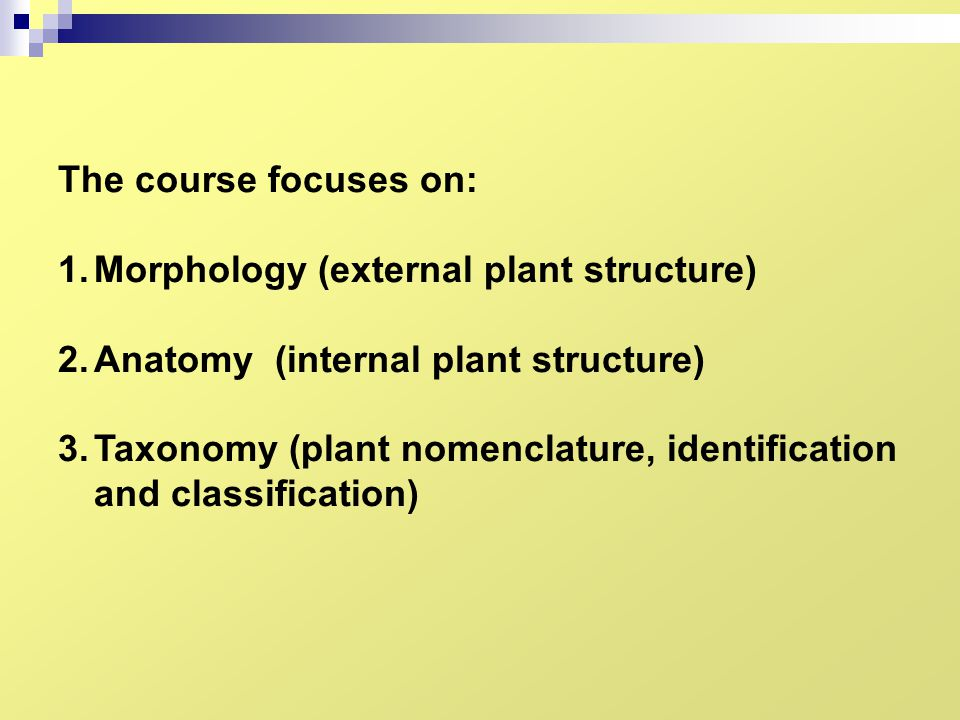 The course focuses on: Morphology (external plant structure) Anatomy (internal plant structure)