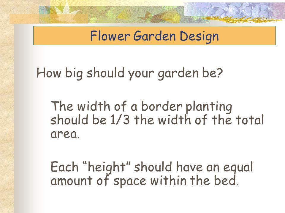 Flower Garden Design How big should your garden be The width of a border planting should be 1/3 the width of the total area.
