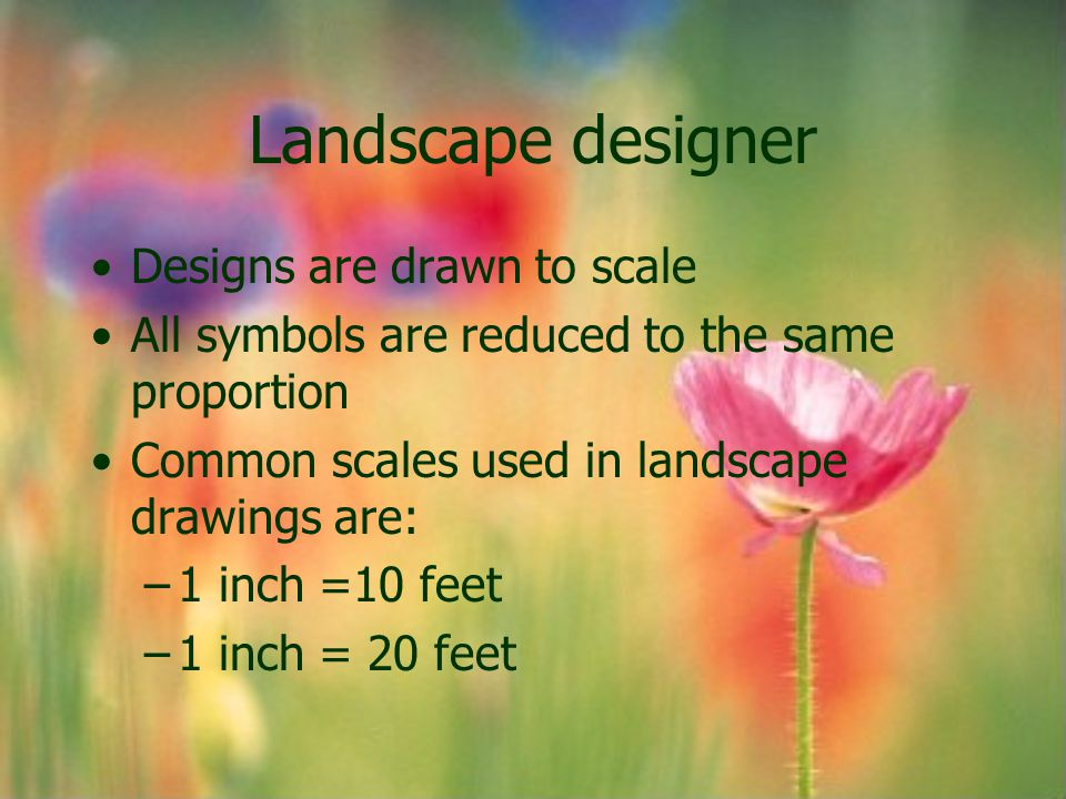 Landscape designer Designs are drawn to scale