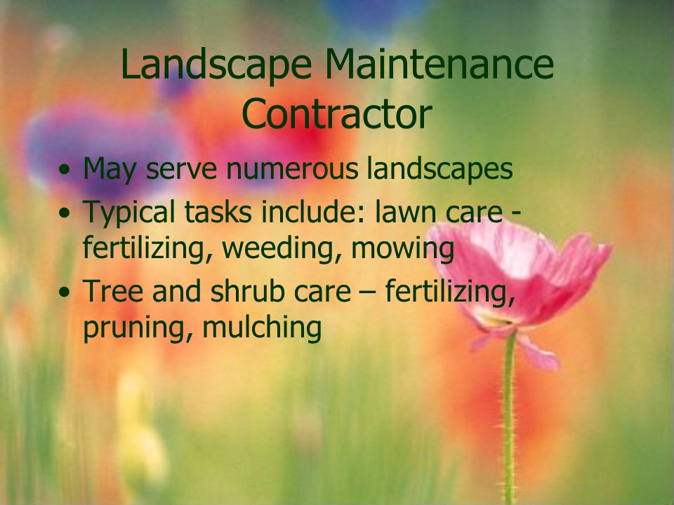 Landscape Maintenance Contractor