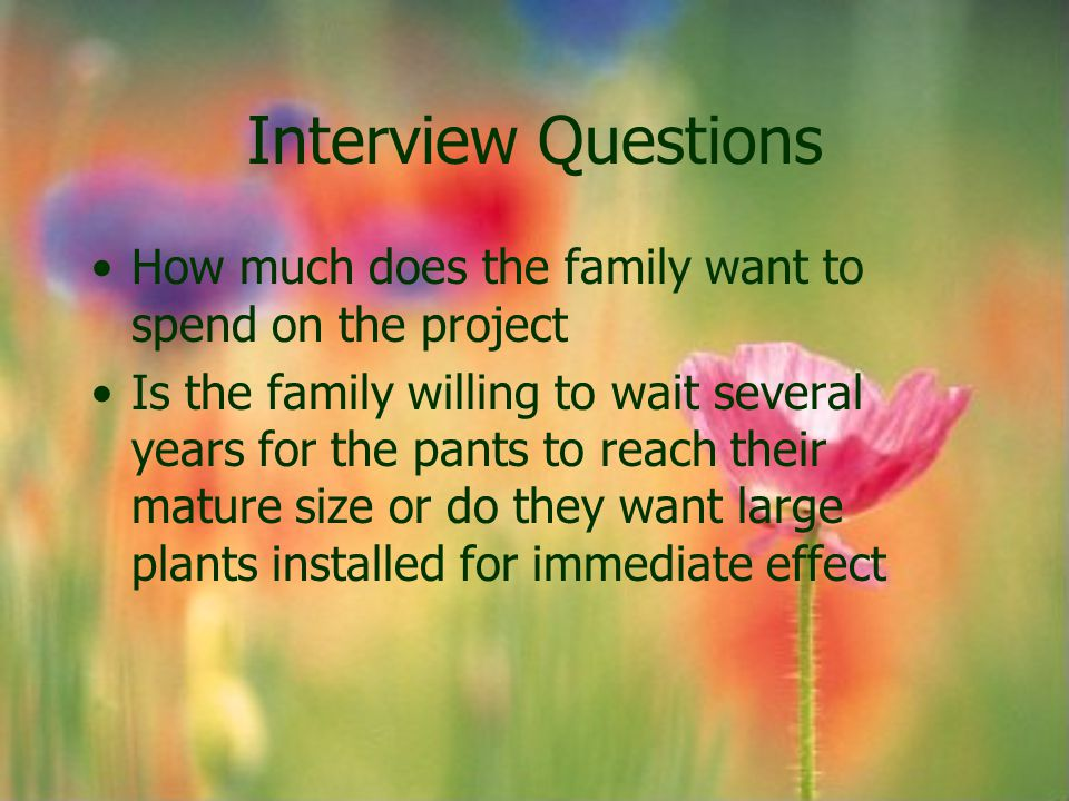 Interview Questions How much does the family want to spend on the project.