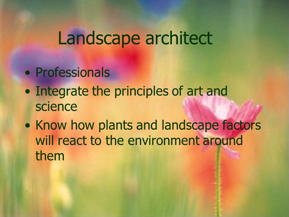 Landscape architect Professionals