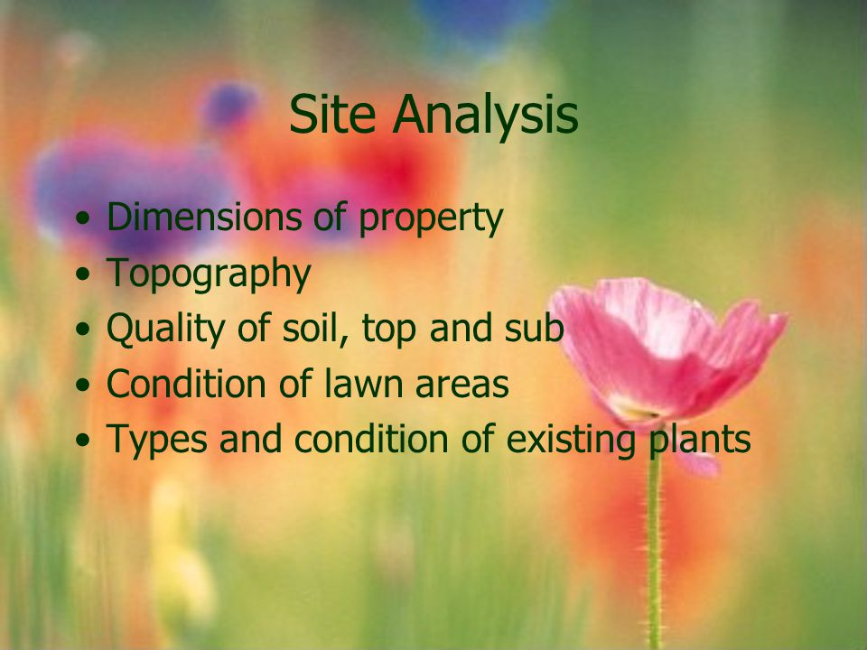 Site Analysis Dimensions of property Topography