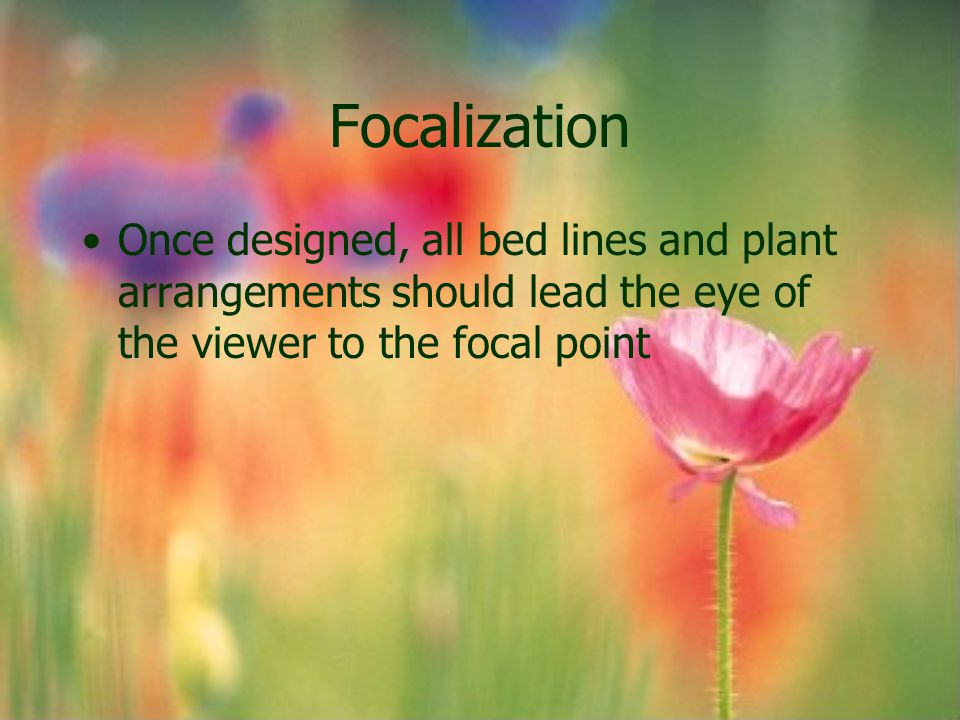 Focalization Once designed, all bed lines and plant arrangements should lead the eye of the viewer to the focal point.