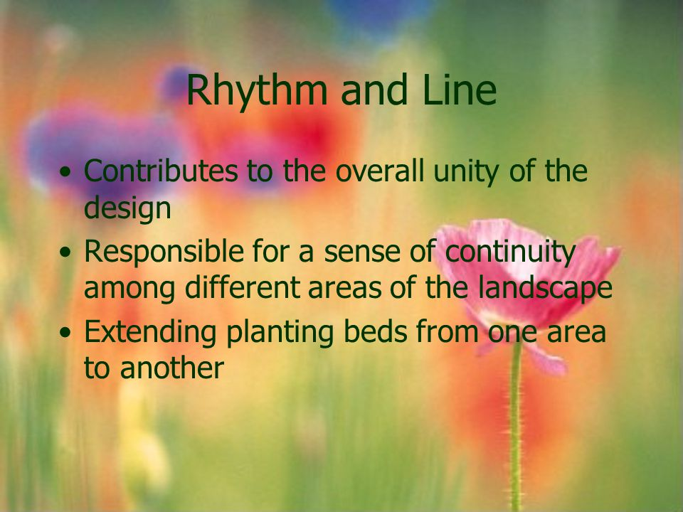 Rhythm and Line Contributes to the overall unity of the design