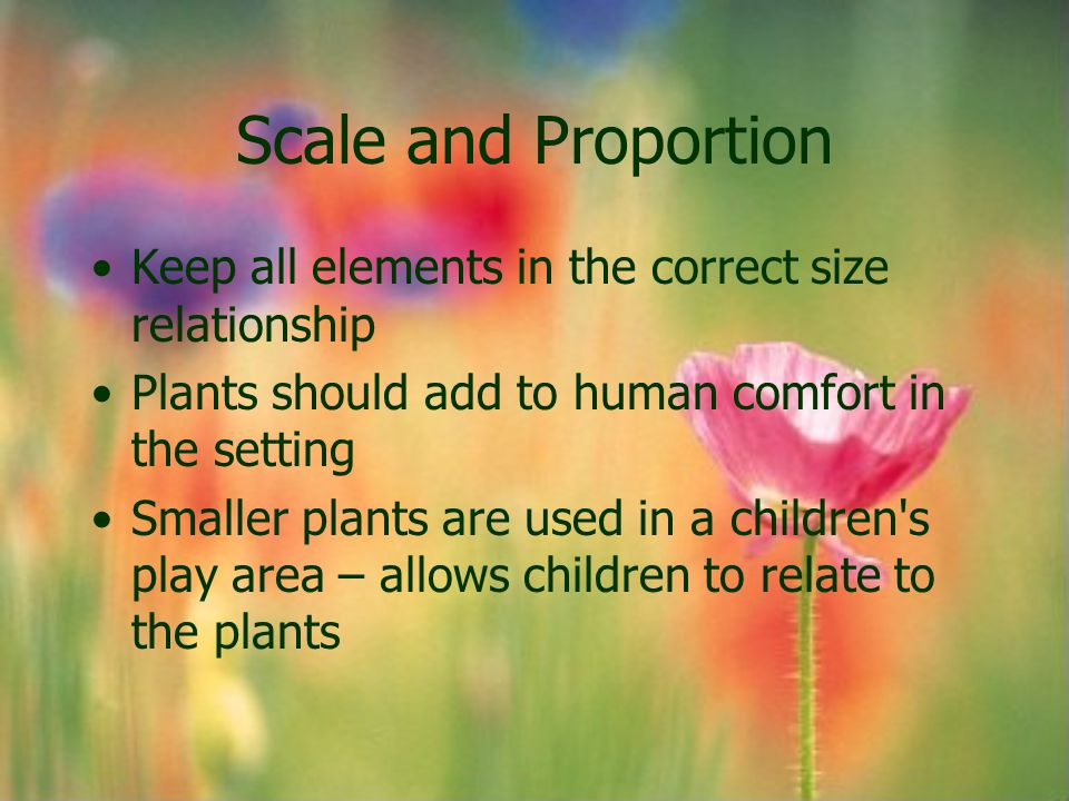 Scale and Proportion Keep all elements in the correct size relationship. Plants should add to human comfort in the setting.