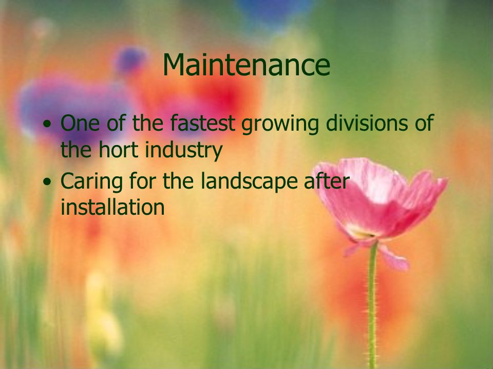 Maintenance One of the fastest growing divisions of the hort industry