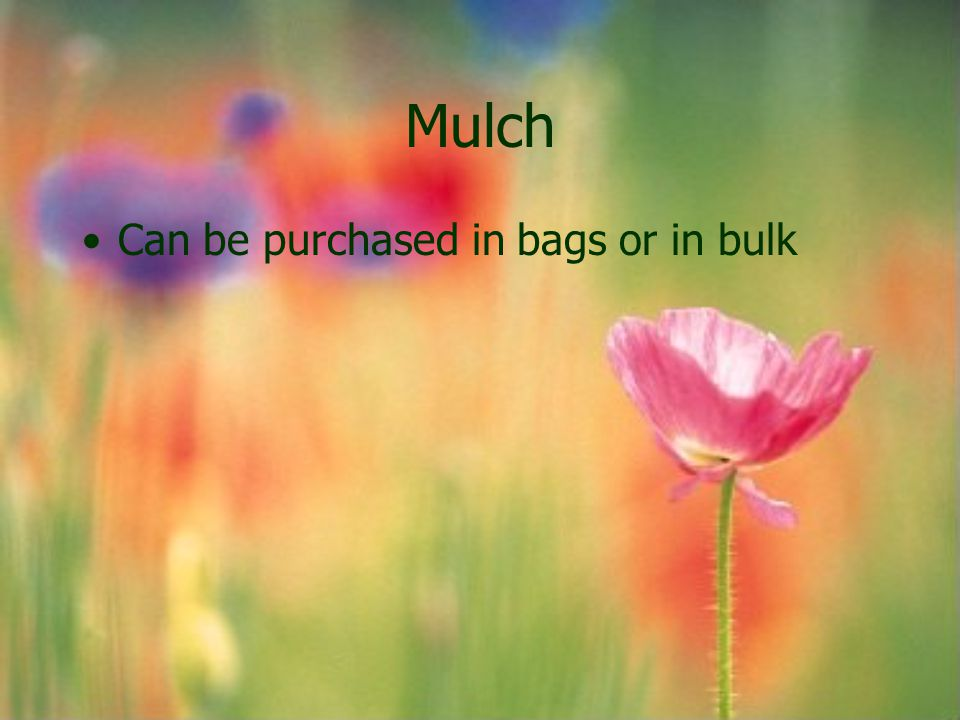 Mulch Can be purchased in bags or in bulk