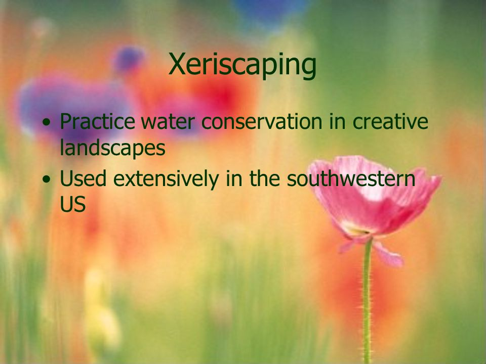 Xeriscaping Practice water conservation in creative landscapes