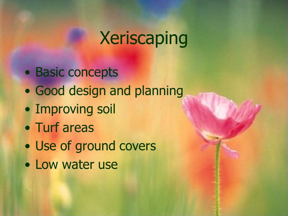 Xeriscaping Basic concepts Good design and planning Improving soil