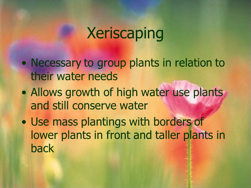 Xeriscaping Necessary to group plants in relation to their water needs