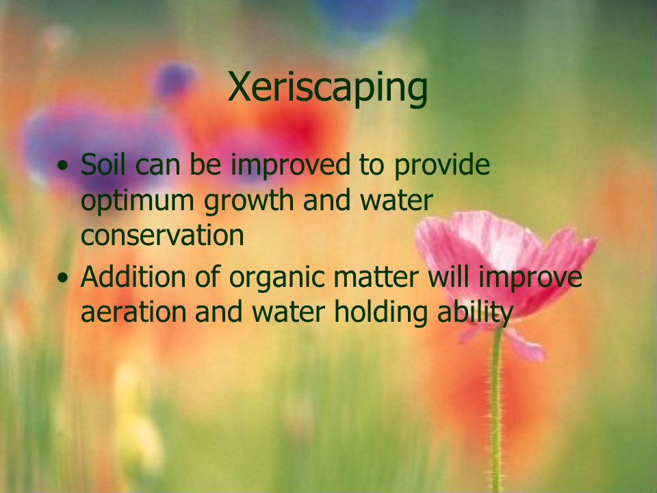 Xeriscaping Soil can be improved to provide optimum growth and water conservation.
