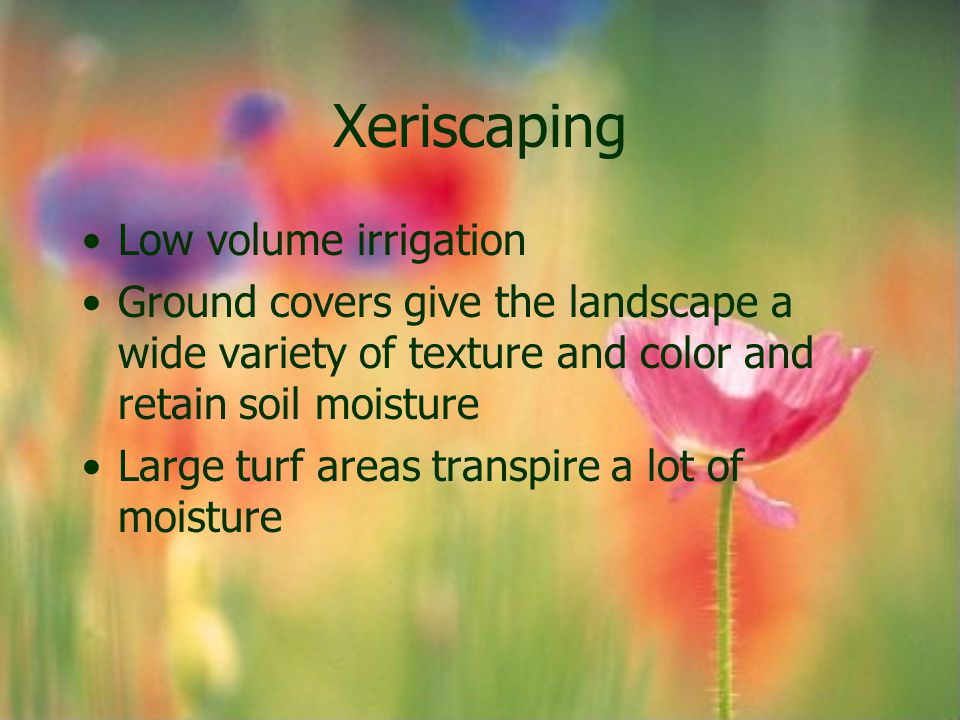 Xeriscaping Low volume irrigation