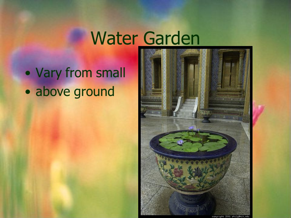 Water Garden Vary from small above ground