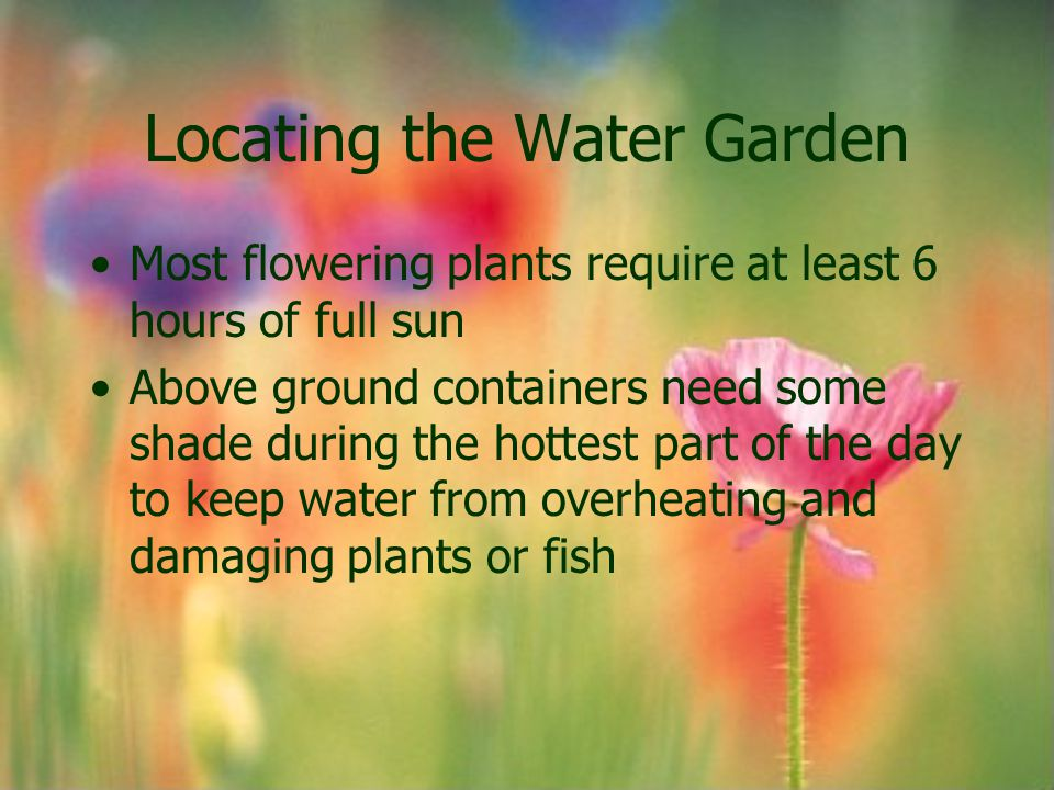 Locating the Water Garden