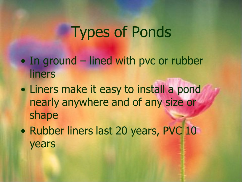 Types of Ponds In ground – lined with pvc or rubber liners