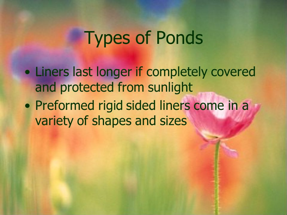 Types of Ponds Liners last longer if completely covered and protected from sunlight.