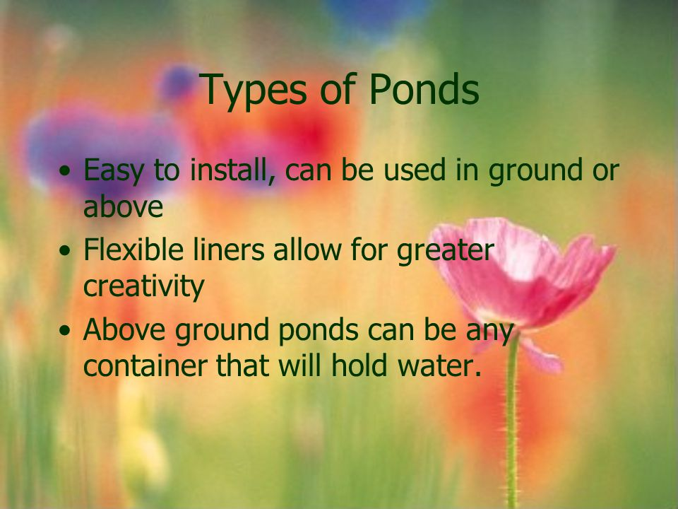 Types of Ponds Easy to install, can be used in ground or above