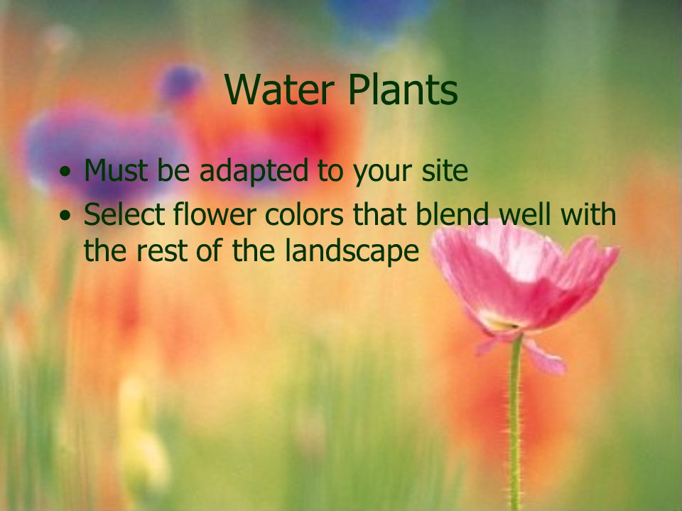 Water Plants Must be adapted to your site