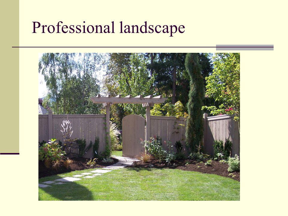 Professional landscape