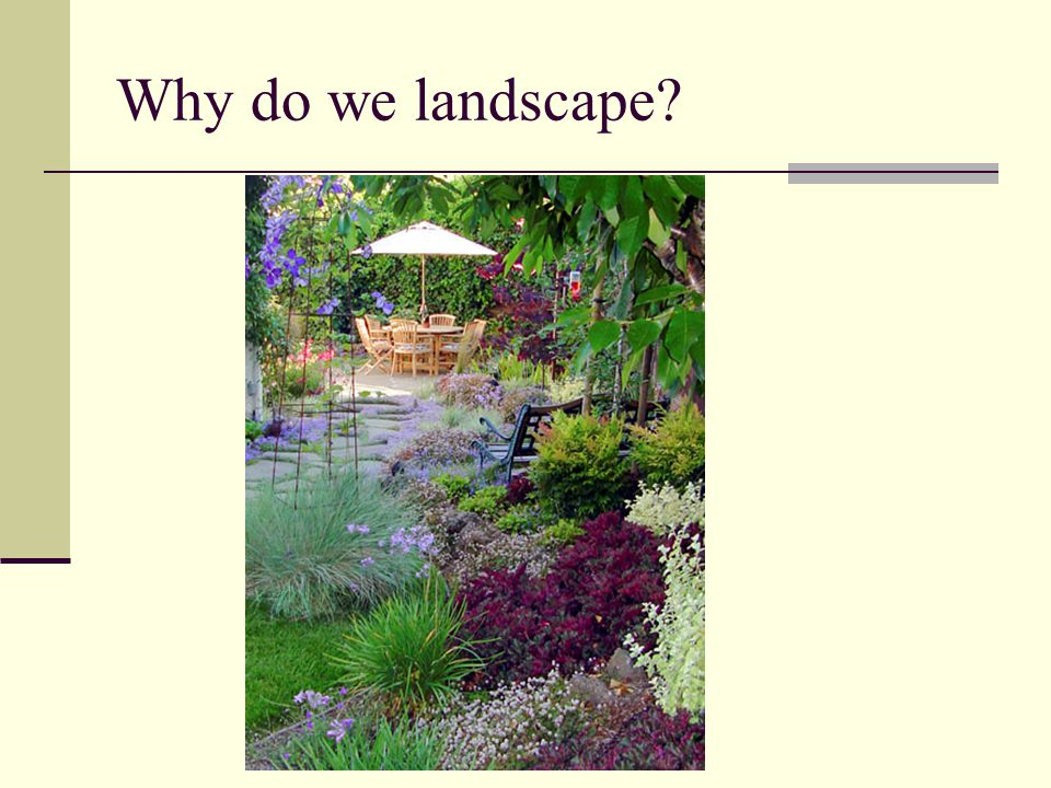 Why do we landscape