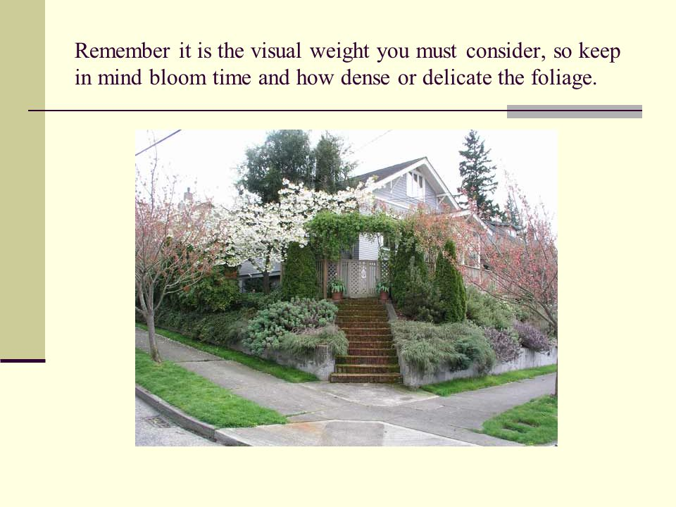 Remember it is the visual weight you must consider, so keep in mind bloom time and how dense or delicate the foliage.