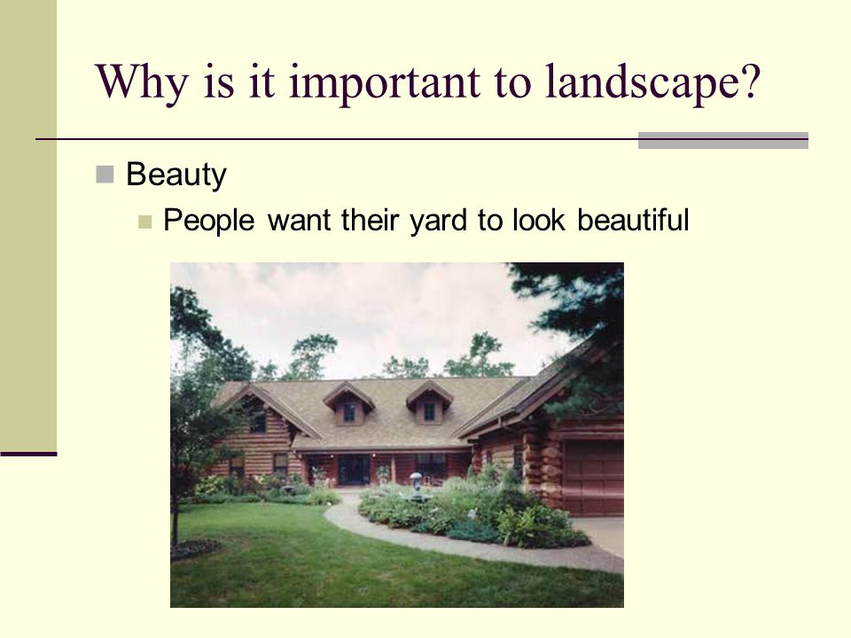 Why is it important to landscape