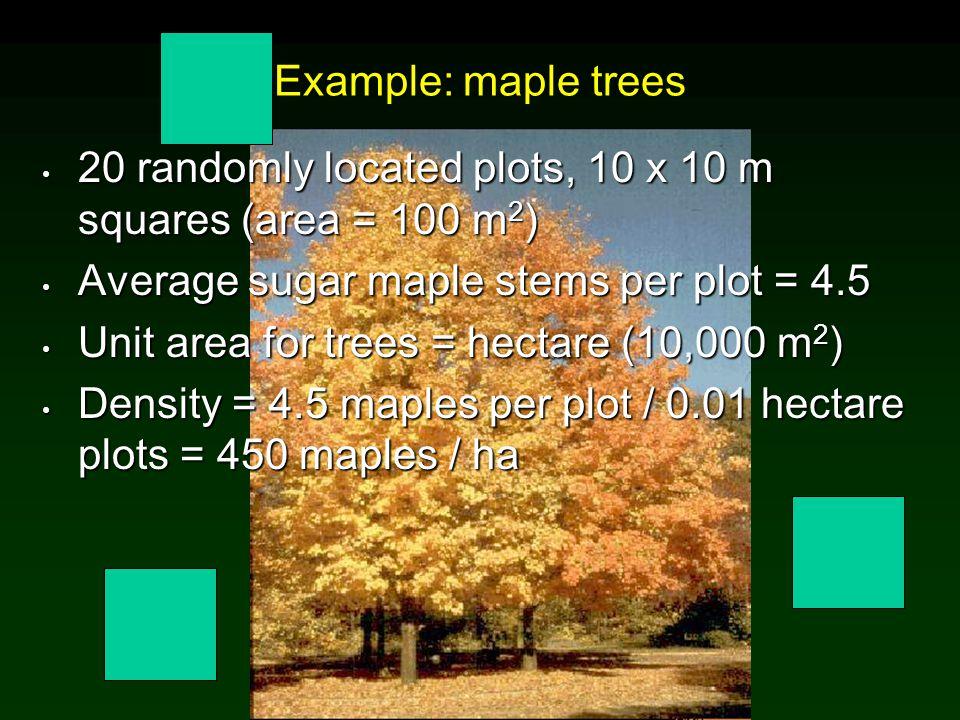 20 randomly located plots, 10 x 10 m squares (area = 100 m2)