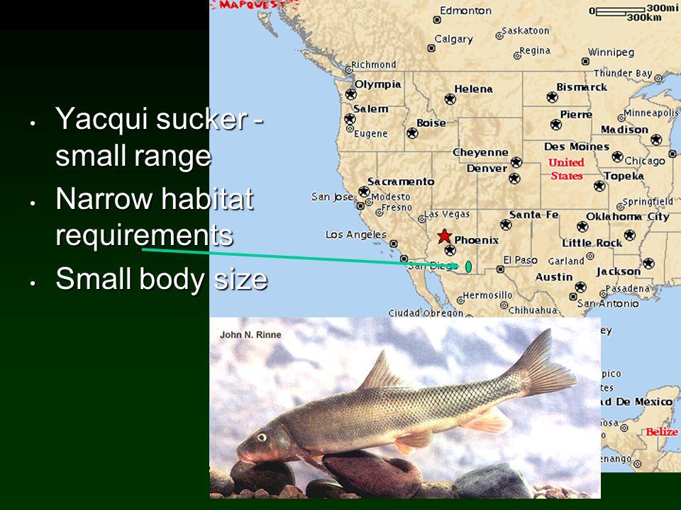 Yacqui sucker - small range Narrow habitat requirements
