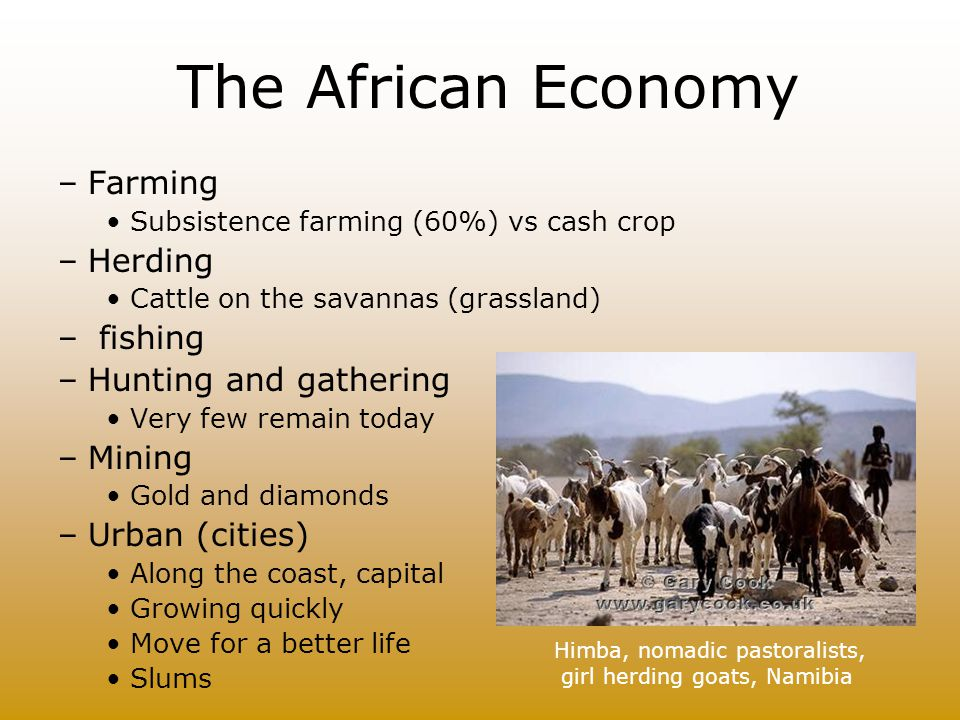 The African Economy Farming Herding fishing Hunting and gathering