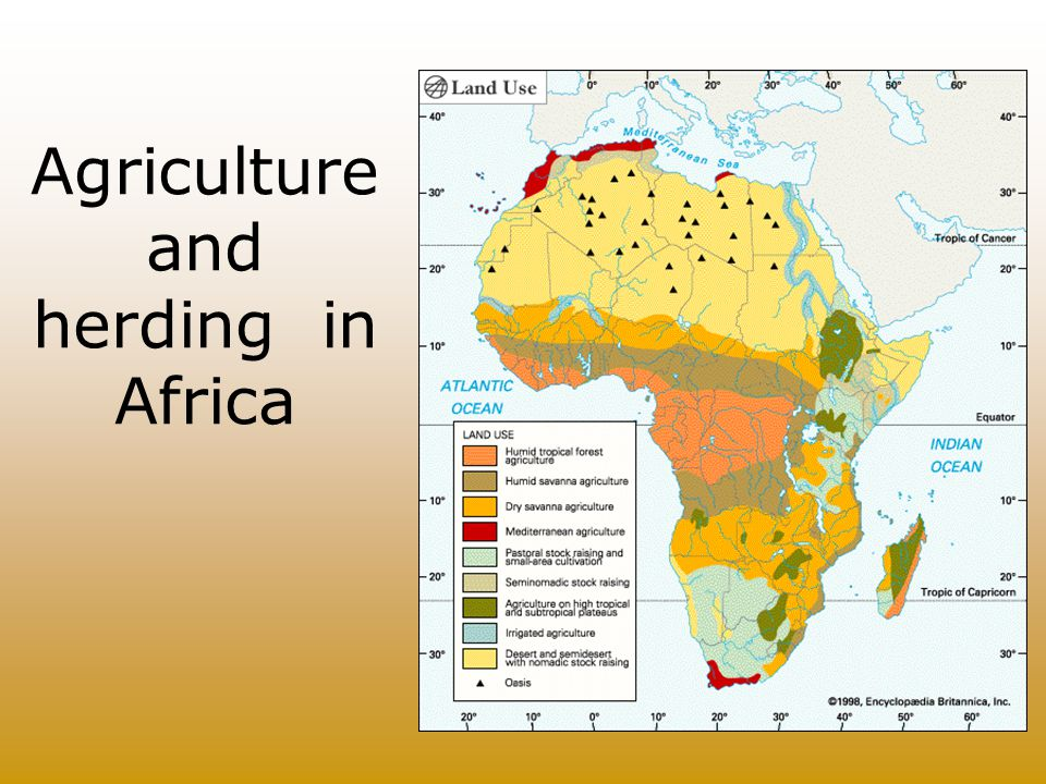 Agriculture and herding in Africa