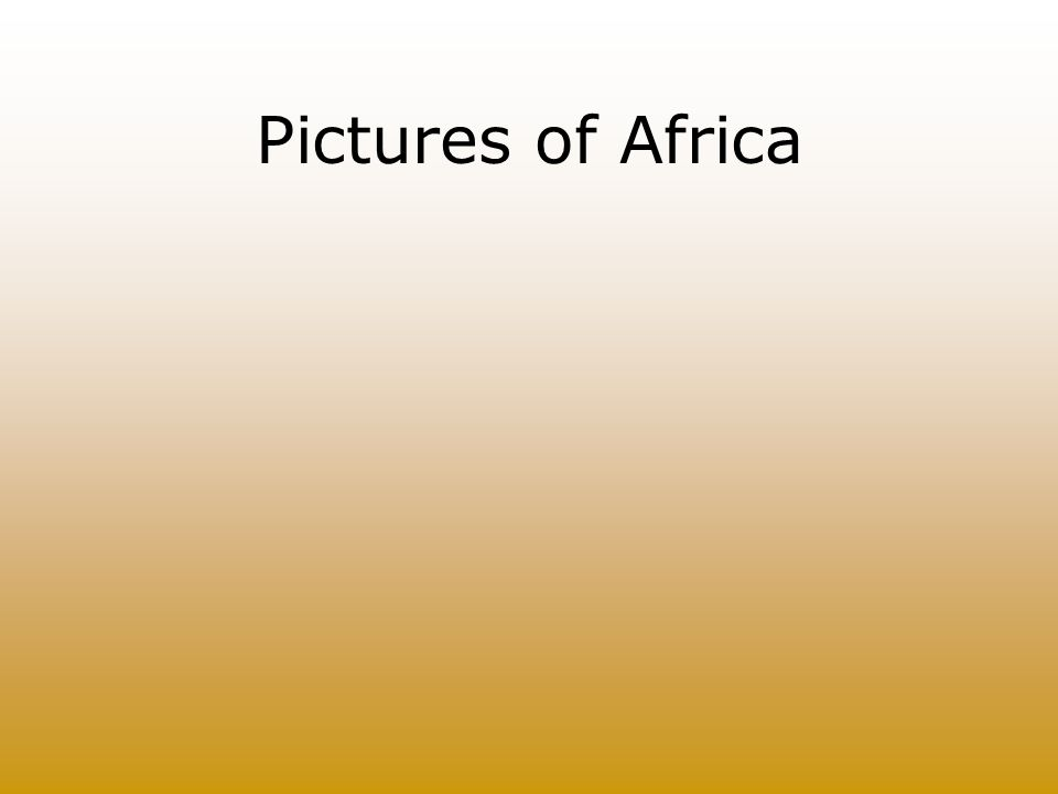 Pictures of Africa