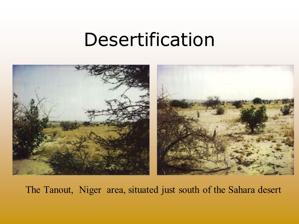 The Tanout, Niger area, situated just south of the Sahara desert