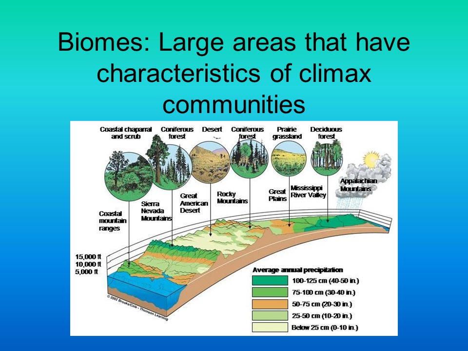 Biomes: Large areas that have characteristics of climax communities