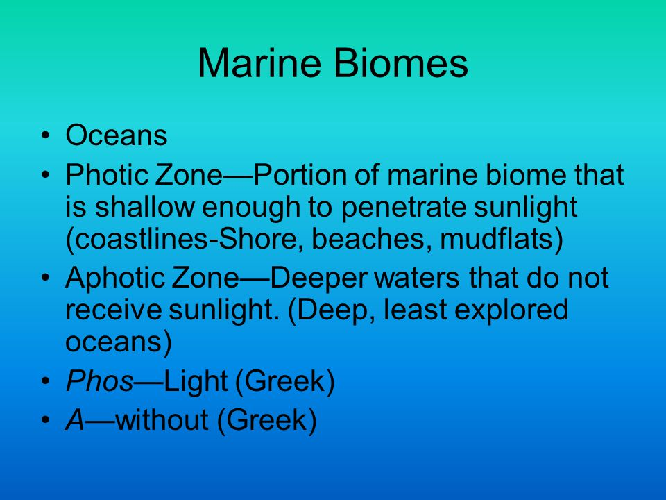 Marine Biomes Oceans. Photic Zone—Portion of marine biome that is shallow enough to penetrate sunlight (coastlines-Shore, beaches, mudflats)