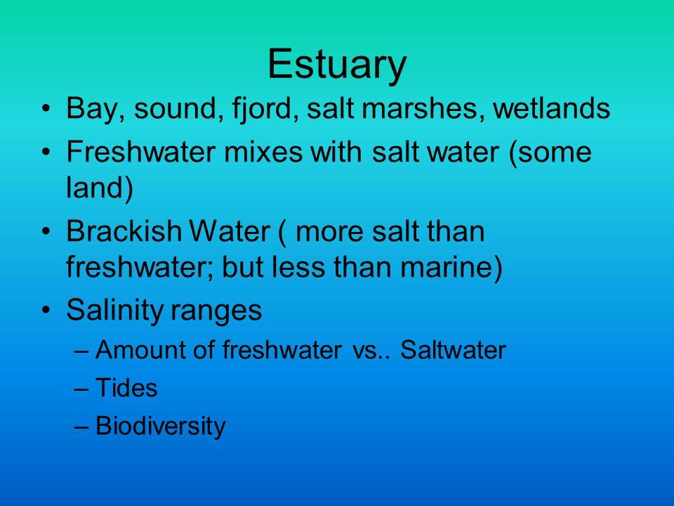 Estuary Bay, sound, fjord, salt marshes, wetlands