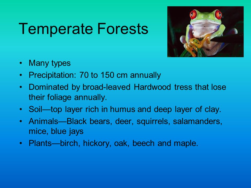 Temperate Forests Many types Precipitation: 70 to 150 cm annually