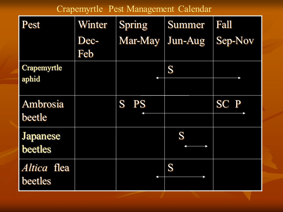 Pest Winter Dec-Feb Spring Mar-May Summer Jun-Aug Fall Sep-Nov S