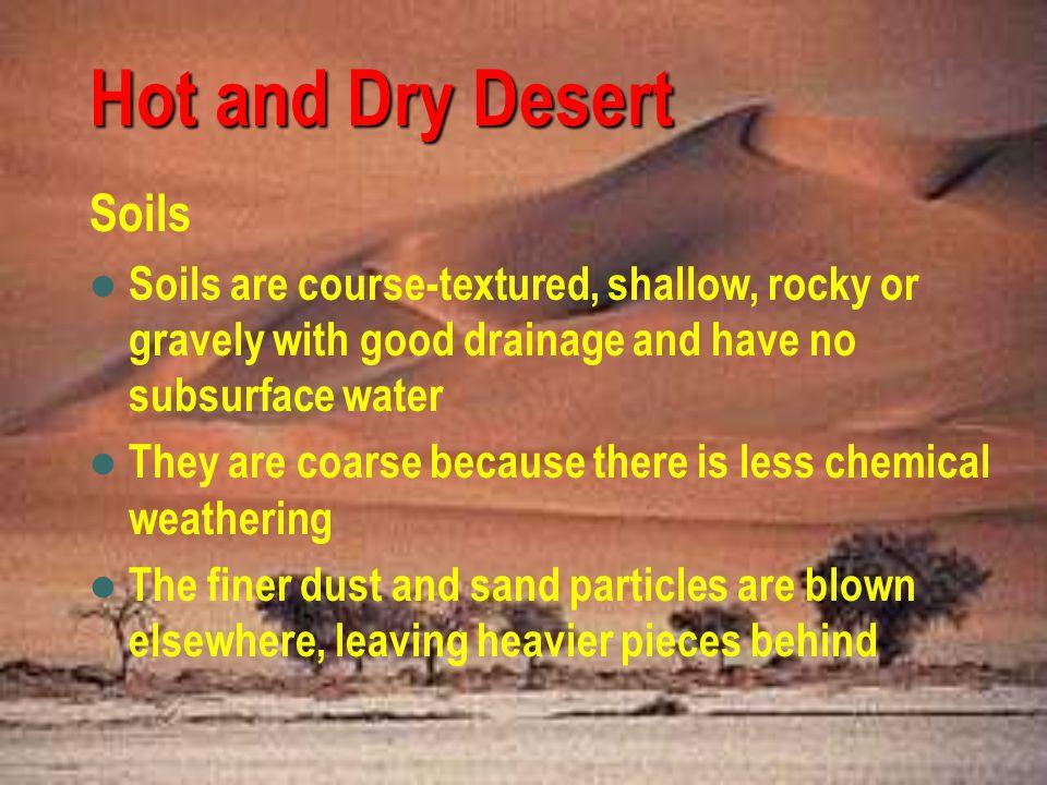 Hot and Dry Desert Soils