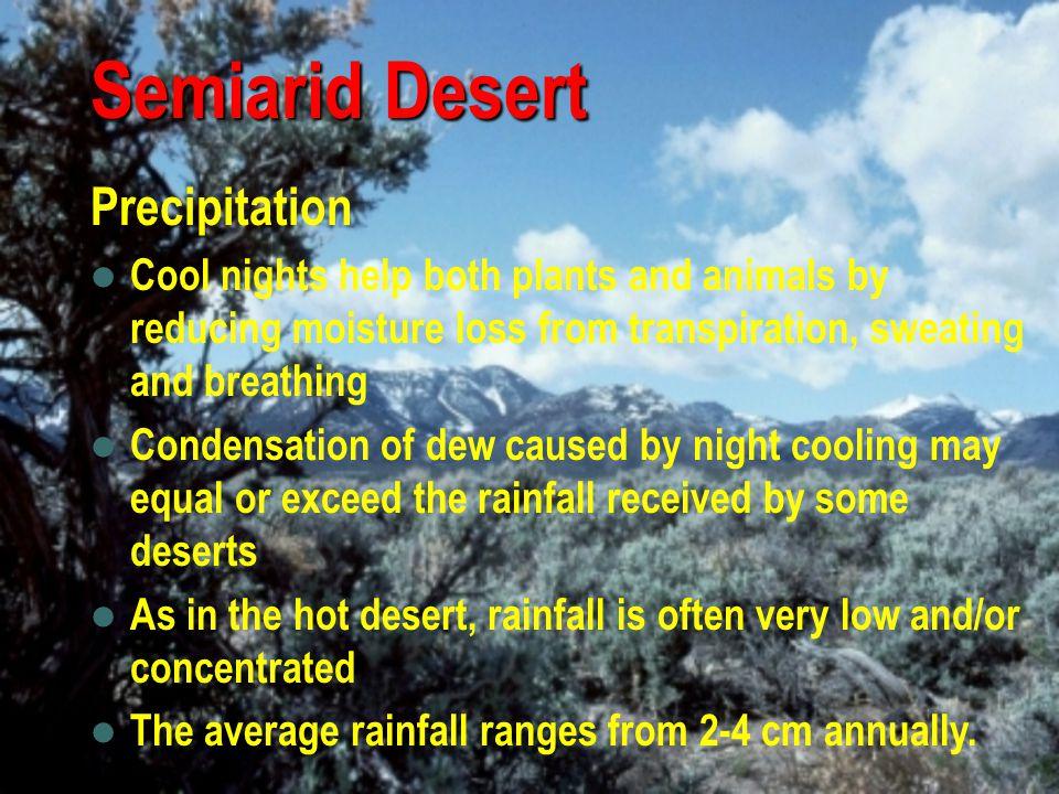 Semiarid Desert Precipitation