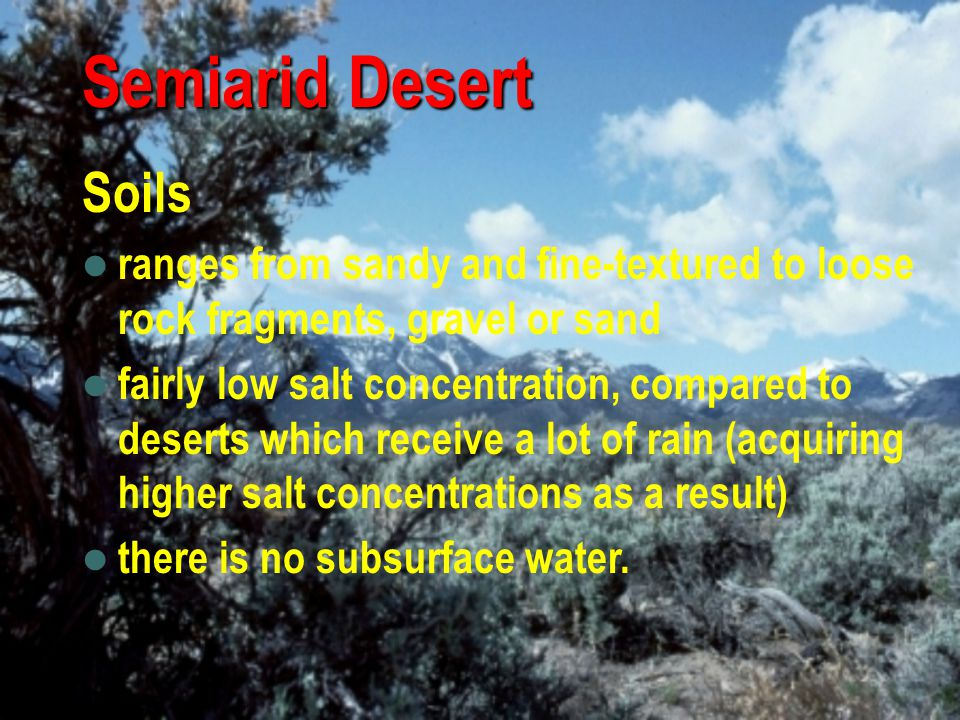 Semiarid Desert Soils. ranges from sandy and fine-textured to loose rock fragments, gravel or sand.