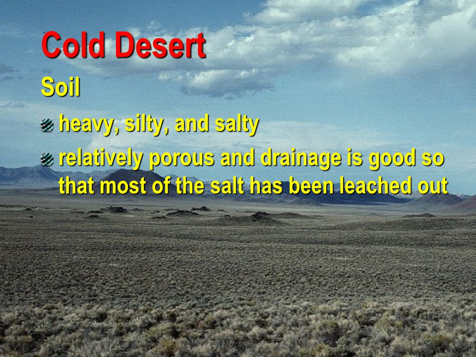 Cold Desert Soil heavy, silty, and salty