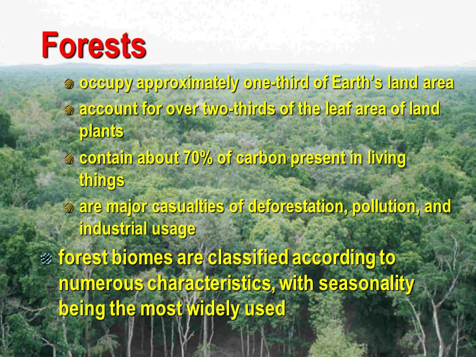 Forests occupy approximately one-third of Earth's land area. account for over two-thirds of the leaf area of land plants.