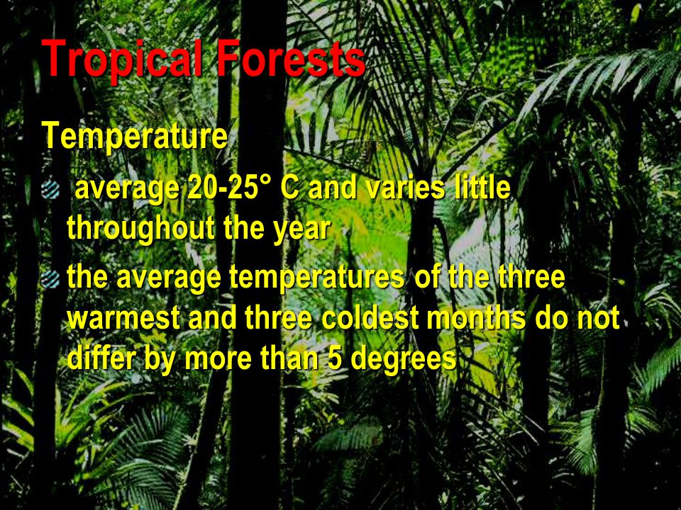 Tropical Forests Temperature
