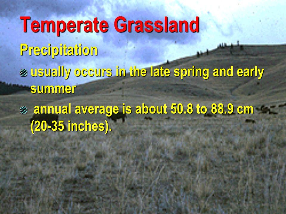 Temperate Grassland Precipitation