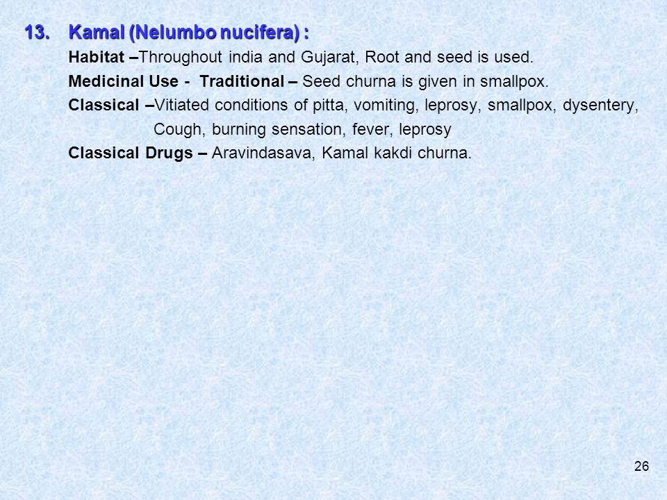 13. Kamal (Nelumbo nucifera) :