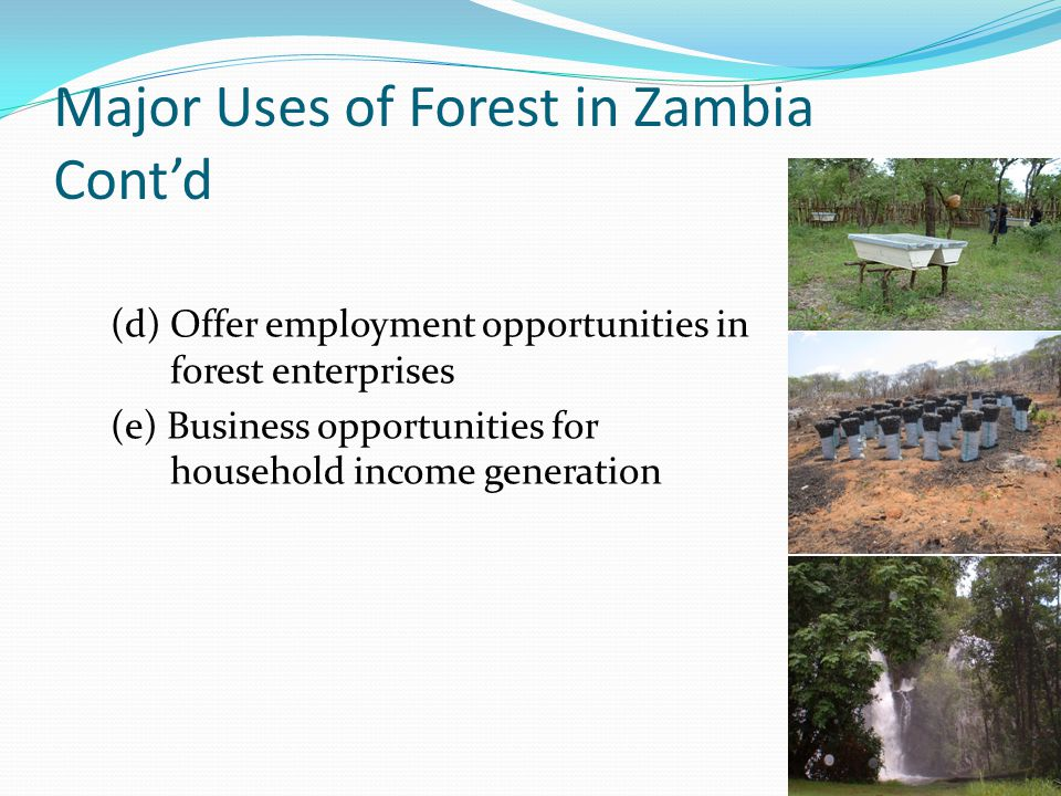 Major Uses of Forest in Zambia Cont'd