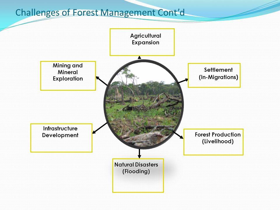 Challenges of Forest Management Cont'd