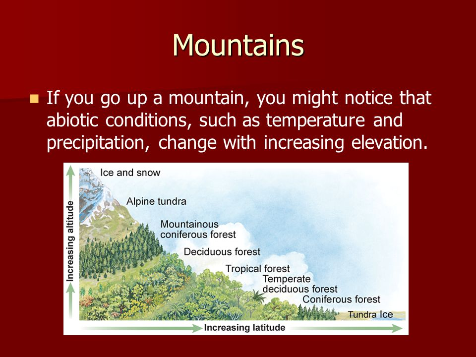 Mountains If you go up a mountain, you might notice that abiotic conditions, such as temperature and precipitation, change with increasing elevation.