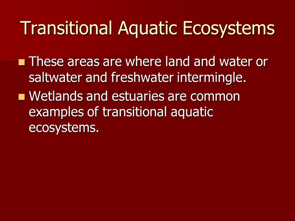 Transitional Aquatic Ecosystems